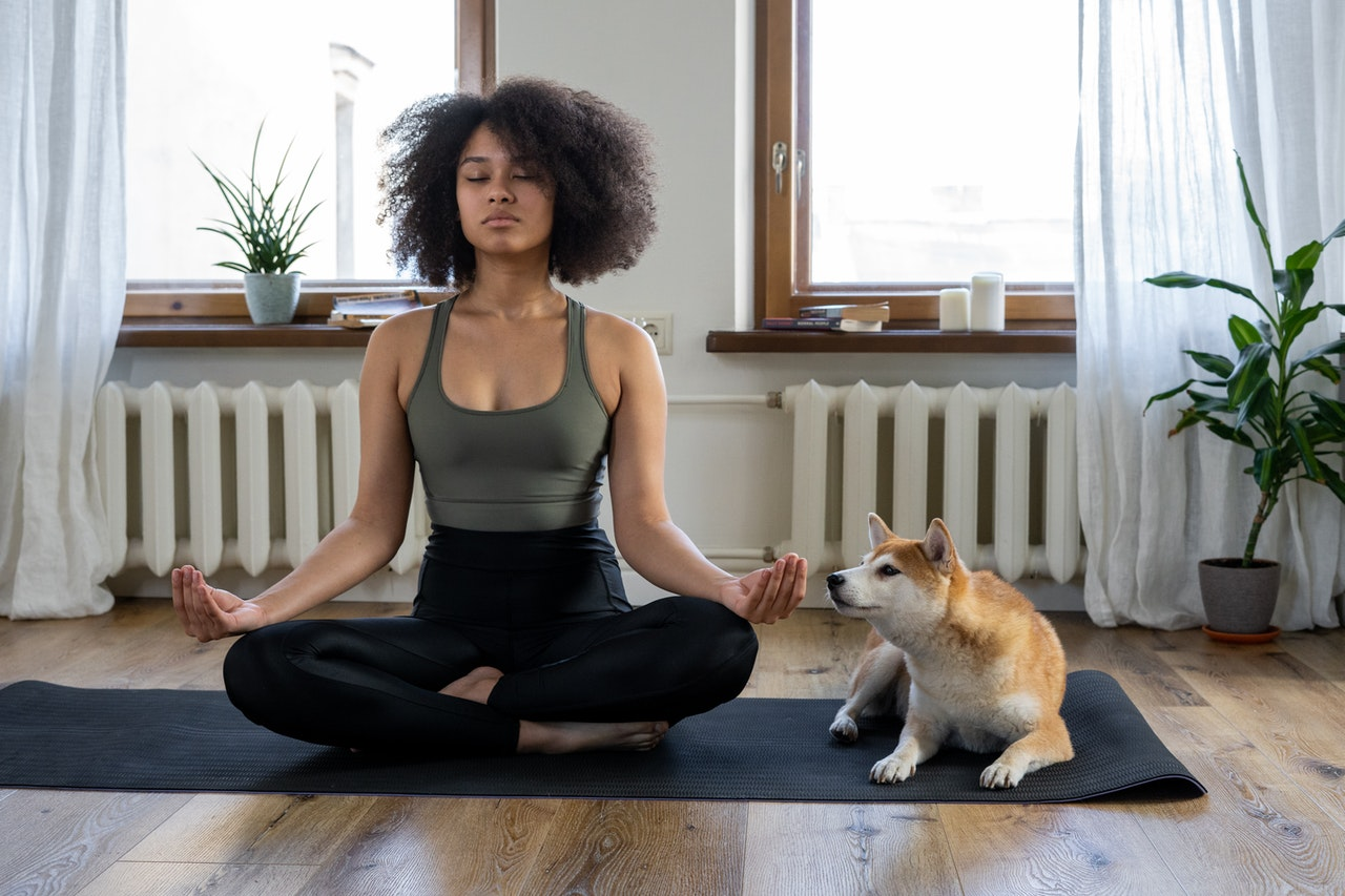 person meditating with a dog